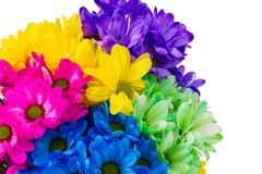 Colorful fresh flowers in a jug Royalty Free Stock Photos