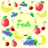 Colorful and fresh fruits illustration. Vector Stock Images