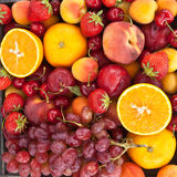 Colorful fresh fruits Royalty Free Stock Image