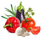Colorful fresh group of vegetables. Royalty Free Stock Photography