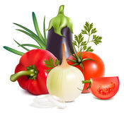 Colorful fresh group of vegetables. Photo-realistic . Colorful fresh group of vegetables Royalty Free Stock Image
