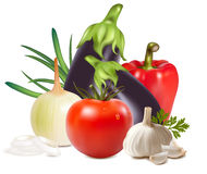 Colorful fresh group of vegetables. Photo-realistic . Colorful fresh group of vegetables Royalty Free Stock Photo