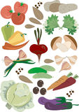 Colorful fresh group of vegetables. Pattern.Backgr Stock Images
