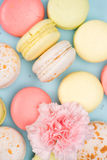 Colorful fresh macarons background with pink flower Royalty Free Stock Photo