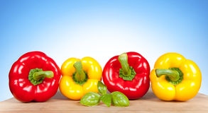 Colorful fresh mixed bell peppers Royalty Free Stock Image