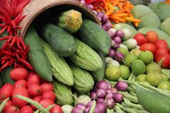 Colorful Fresh Organic Vegetables And Red hot Chilli royalty free stock photo