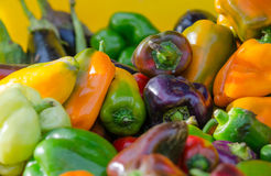 Colorful fresh peppers Stock Image