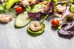 Colorful fresh salad with cucumber and shrimps, close up Royalty Free Stock Image