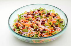 Colorful fresh salad. Mixed colorful salad of cranberry and carrot with lettuce and baby leaves Stock Image