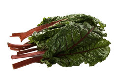 Colorful Fresh Swiss Chard. Fresh Swiss Chard with it's dark green leaves and bright red stems Stock Image