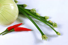 Colorful fresh vegetables. Green spring onions, a white onion bulb and bright red chilli peppers on a white background Stock Photo