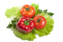 Colorful fresh vegetables isolated Stock Photography