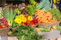 Colorful fresh vegetables for sale Stock Image