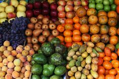 Colorful fruit royalty free stock photography