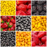 Colorful Fruit Background Collage royalty free stock photos