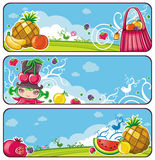 Colorful fruit banners Stock Photography