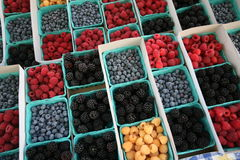 Colorful fruit berries in boxes Stock Photos