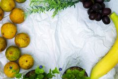 Fruit Border background with copyspace Royalty Free Stock Photography