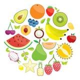 Colorful Fruit Circle illustration Stock Photo