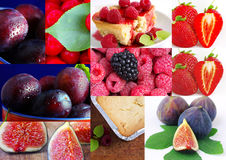 Colorful fruit collage Royalty Free Stock Images