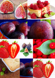 Colorful fruit collage Royalty Free Stock Image