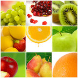 Colorful fruit collage Stock Image