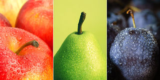 Colorful fruit collage. Collage-water drops on fruits Stock Images