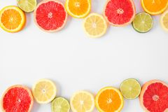 Colorful fruit double border of citrus slices, top view over a white background. Colorful fruit double border of fresh citrus slices. Top view, flat lay over a royalty free stock photography