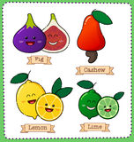 Colorful fruit illustration Stock Photos