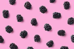 Colorful fruit pattern of blackberries royalty free stock photography