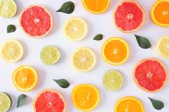 Colorful fruit pattern of citrus slices and leaves, top view over a white background stock image
