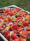Colorful fruit salads Stock Images