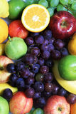 Colorful fruits Stock Photos