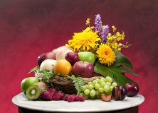 Colorful fruits isolated  Royalty Free Stock Photography