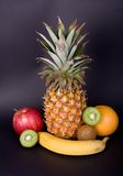 Colorful Fruits royalty free stock photos