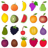 Colorful Fruits Collection Cartoon Style Stock Images