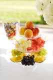 Colorful Fruits Stock Image