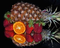 Colorful Fruits. Multicolored fruits  on the mirror Stock Image