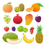Colorful fruits set. Vector illustration Royalty Free Stock Photos