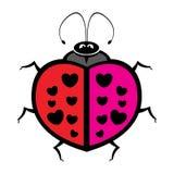 Colorful fun ladybug. Vector illustration Royalty Free Stock Photography