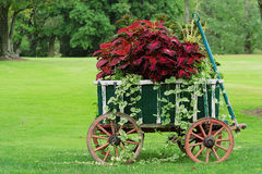 Colorful Garden Cart Royalty Free Stock Photos