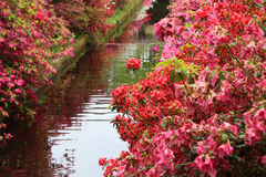 Colorful garden with a creek Stock Photo