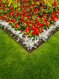 Colorful Garden Flower Bed and Grass Lawn. Close up of a colourful garden flower bed  with salvia and silver leaf flowers and a grass border Stock Photo