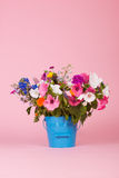 Colorful garden flowers in bucket Royalty Free Stock Photography