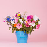 Colorful garden flowers in bucket Royalty Free Stock Images