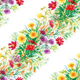 Colorful garden flowers Seamless pattern Royalty Free Stock Images