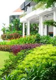 Colorful garden landscaped with office building. An image of a modern contemporary school and office building with lush colourful tropical landscapings in layers stock photo