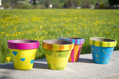 Colorful garden pots next to flowering field Royalty Free Stock Photo