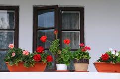 Balcony Garden in Romania Royalty Free Stock Image