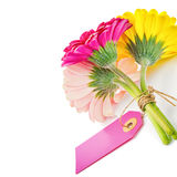 Colorful gerbera flowers with gift tag. Isolated over white Royalty Free Stock Photo